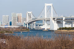 Tokyo View From Odaiba Stock Photography