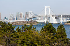 Tokyo view from Odaiba Royalty Free Stock Photo