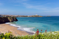 Tolcarne beach Newquay North Cornwall UK by Narrowcliffe in spring with blue sky and sea Stock Image