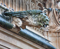 Toledo - Detail of animal as gothic spoutler in rain from atrium of Monasterio de San Juan de los Reyes Stock Photo