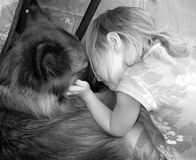 Tolerance 2. A young girl and her alsation dog Stock Photos