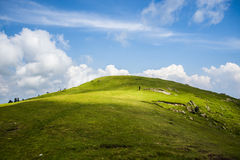 Tolipeer. Is a hilltop area situated in Tehsil Rawalakot in the Poonch District of Azad Kashmir. Its approximate elevation is about 8800 ft above sea level. It royalty free stock photography