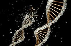 tolkning 3D av DNA:t som täckas med dollarsedlar royaltyfri illustrationer