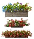 tolkning 3d av en realistisk blomkrukasamling som isoleras på wh Royaltyfri Bild