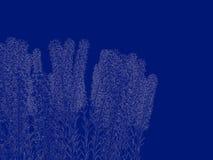 tolkning 3d av en skisserad buskeritning som tillbaka isoleras på blått Royaltyfri Foto