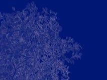 tolkning 3d av en skisserad trädritning på blått tillbaka Royaltyfri Fotografi