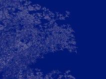 tolkning 3d av en skisserad trädritning på blått tillbaka Fotografering för Bildbyråer