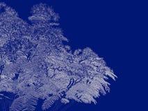 tolkning 3d av en skisserad trädritning som tillbaka isoleras på blått Royaltyfria Bilder