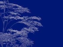 tolkning 3d av en skisserad trädritning som tillbaka isoleras på blått Royaltyfri Foto