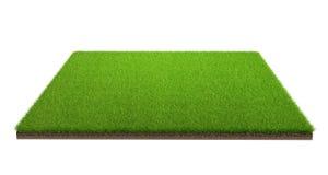 tolkning 3d av fältet för grönt gräs som isoleras på en vit bakgrund med urklippbanan Sportfält arkivfoton