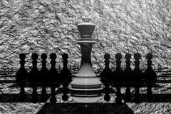 tolkning 3D: illustration av schackstycken det keramiska konungschacket på mitten med pantsätter schack i baksidan black maten fö Arkivbilder