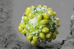 Tolkning för illustration 3D för HCV-virushepatit medicinsk Arkivbilder