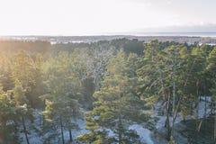 Tolkuse bagno, Estonia zdjęcia stock