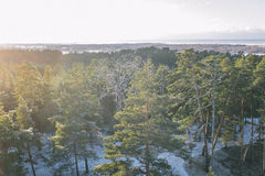 Tolkuse bog, Estonia Stock Photos