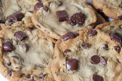 Tollhouse Chocolate Chip Cookies. Chocolate Chip Tollhouse Cookies, golden brown with big chuncks of chocolate Royalty Free Stock Image