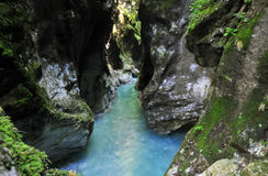 Tolmin gorge Royalty Free Stock Photography