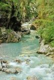 Tolmin gorge. With river Tolminka, Slovenia Stock Image