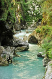 Tolmin gorge Stock Image