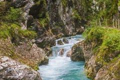 Tolmin klyfta, natur, Slovenien Arkivfoto