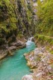Tolmin klyfta, natur, Slovenien Arkivbild