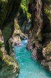 Tolmin klyfta, natur, Slovenien Fotografering för Bildbyråer