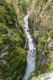 Tolmin-Schlucht, Natur, Slowenien Lizenzfreies Stockbild
