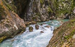 Tolmin wąwóz, natura, Slovenia Obraz Royalty Free