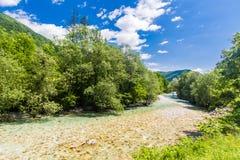 Tolminka-Fluss Stockbilder