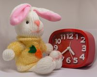 Tolo do coelho com pulso de disparo vermelho Fotografia de Stock