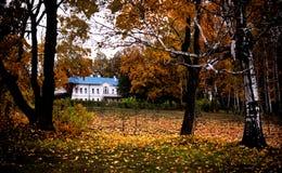 Tolstoy-Zustand, Yasnaya Polyana, Autumn Scene Stockfoto
