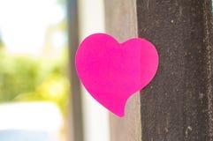 Tom anteckningsbok eller klibbiga anmärkningar som är rosa med utomhus- solljusbackgr royaltyfri bild