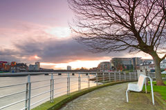 Tom bänk på den Shannon floden Arkivbild