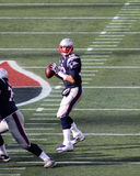 Tom Brady New England Patriots lizenzfreies stockfoto