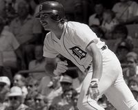 Tom Brookens, Detroit Tigers Fotos de Stock