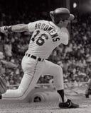 Tom Brookens, Detroit Tigers Fotografia de Stock