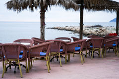 tom cafe Royaltyfri Foto