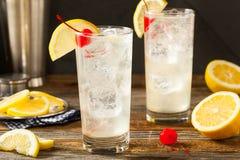 Tom Collins Cocktail clássico de refrescamento Foto de Stock Royalty Free