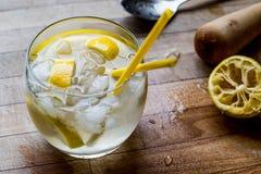 Tom Collins Cocktail con el limón y el hielo Imagen de archivo libre de regalías