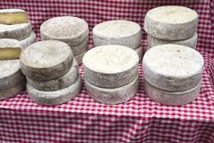 Tom de Savoie cheese at the farmer's market Royalty Free Stock Photo