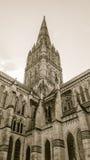 Tom do Sepia do baixo ângulo da torre da catedral de Salisbúria fotos de stock royalty free