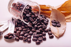 Tom do vintage dos feijões de café, fundo do trabalho de arte Fotografia de Stock Royalty Free