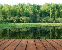 Tom durk på bakgrunden av naturen, skogsjö royaltyfria foton