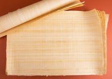 Tom egyptisk papyrus Royaltyfria Bilder