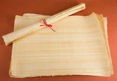Tom egyptisk papyrus Arkivfoto