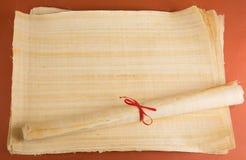 Tom egyptisk papyrus Arkivfoton