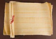 Tom egyptisk papyrus Fotografering för Bildbyråer