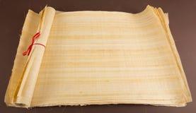 Tom egyptisk papyrus Royaltyfri Fotografi