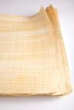Tom egyptisk papyrus Arkivbild