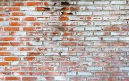 Tom gammal bakgrund för textur för tegelstenvägg med kopieringsutrymme Skalning av murbruktextur Bakgrund för tappningtegelstenvä Royaltyfri Bild