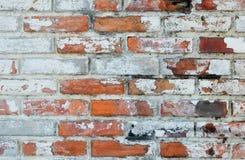 Tom gammal bakgrund för textur för tegelstenvägg med kopieringsutrymme Skalning av murbruktextur Bakgrund för tappningtegelstenvä Arkivfoto